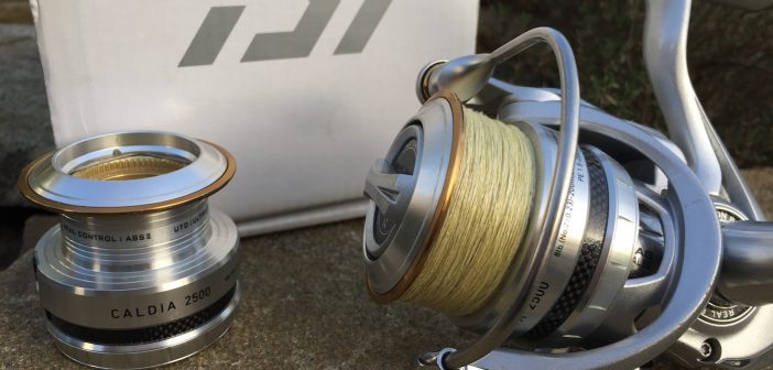 Daiwa CALDIA 2500: Spule, Ersatzspule und Bügel im Detail