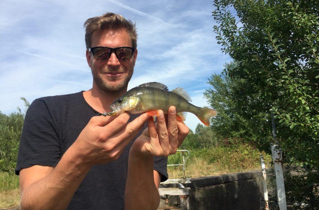 Angler mit Barsch gefangen auf Flash-J Gummifisch