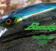 Bassday Mogul Minnow 110SP im Test: Der XL-Barschwobbler