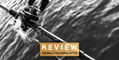 Tailwalk Fullrange C711H im Test – Puncher mit Feingefühl