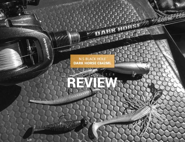 N.S Blackhole Dark Horse V2 C-642ML – Viel Rute für wenig Geld