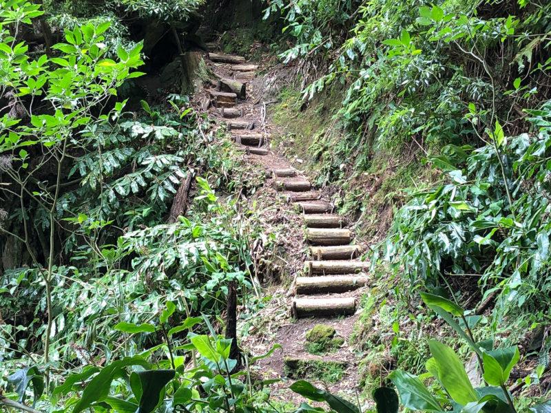 Herrliche Wanderwege