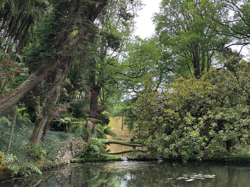 Alles voller Koi-Karpfen: Der Park in Furnas