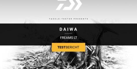 Daiwa Freams LT im Test – die Praxistauglichkeit des JDM-Modells