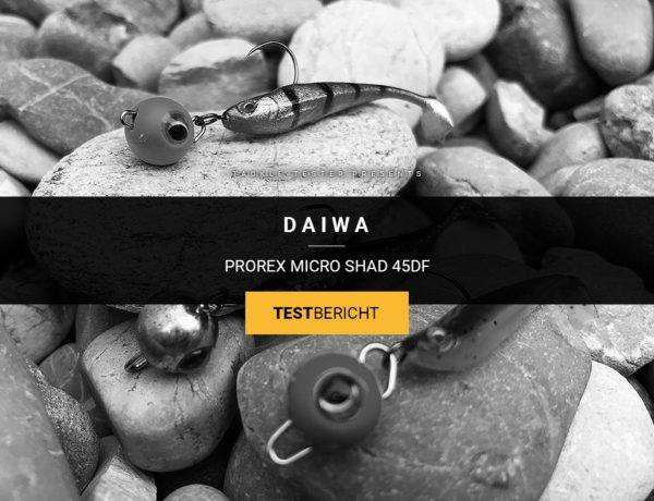 Daiwa Prorex Micro Shad 45DF im Test: Hat er das Zeug für UL-Sommermärchen?