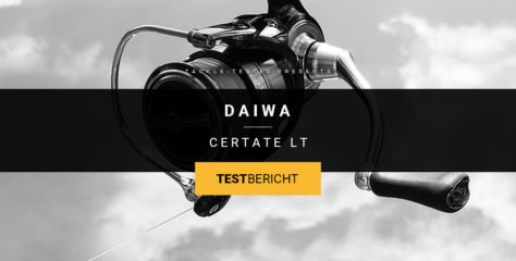 Daiwa Certate LT 2019 im Dreifach-Test: High-End ohne Allüren